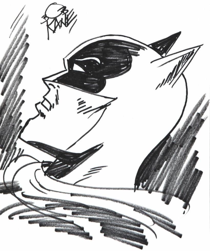 Comic books et super-héros Batman11