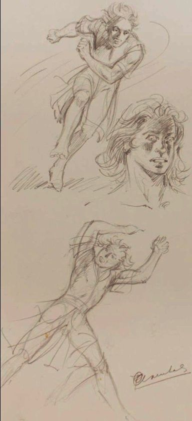 Chevalier Ardent - Page 9 Craenh12