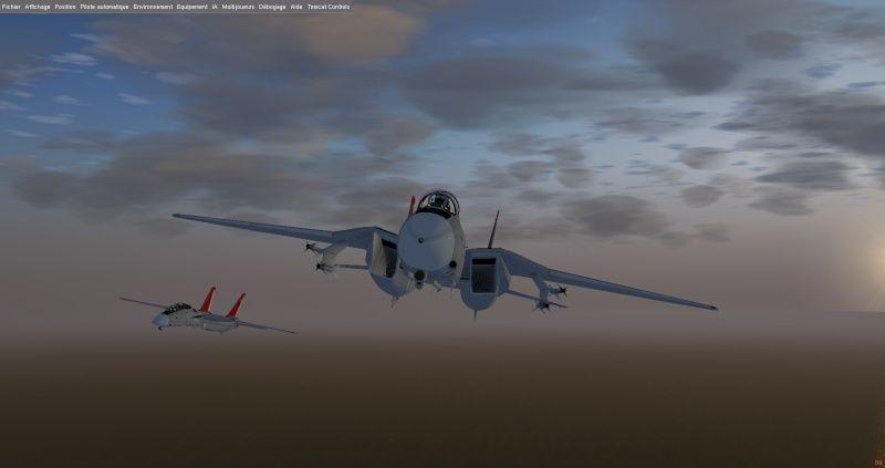Un F14 en méditerranée ? Fgfs-s11