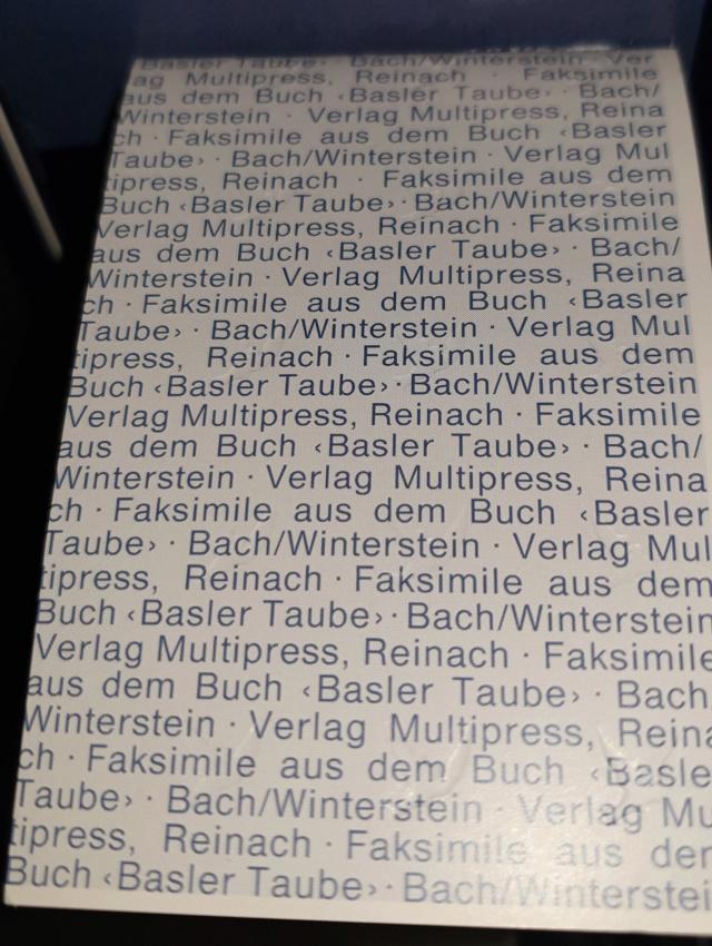 Baseler Taube Seite  Basler11