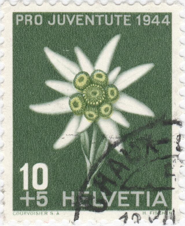 SBK J110 (Mi 440) Edelweiss J110_410