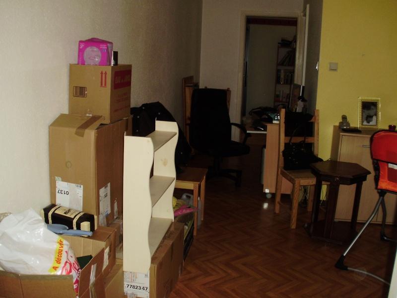 Besoin d'aide pour aménager mon salon/salle à manger Divers13