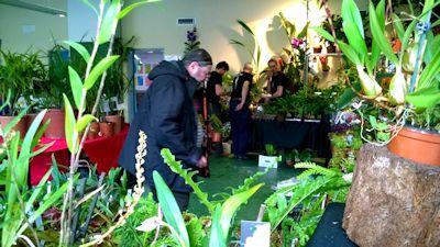 Expo Vente à Edenia en région parisienne, 26 et 27 mars 2016, Cergy Pontoise 95  Araflo11