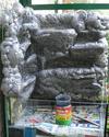 Réalisation d'un terrarium paysagé pour plantes carnivores Resine15