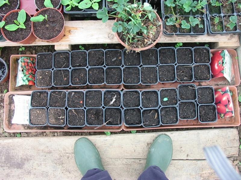 le jardin de jojo 109-0927