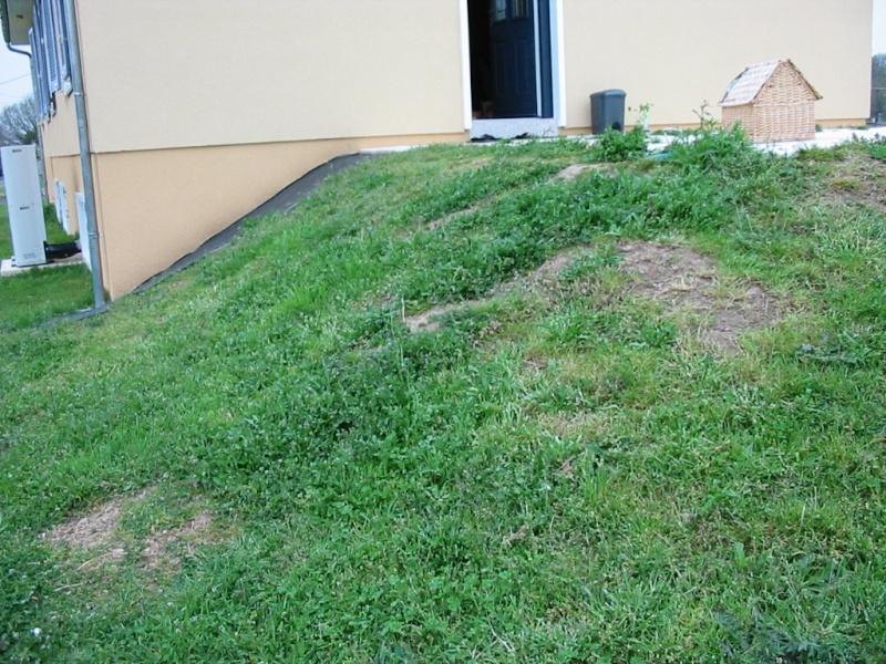 le jardin de jojo 109-0960