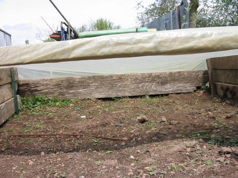 le jardin de jojo 110-1047