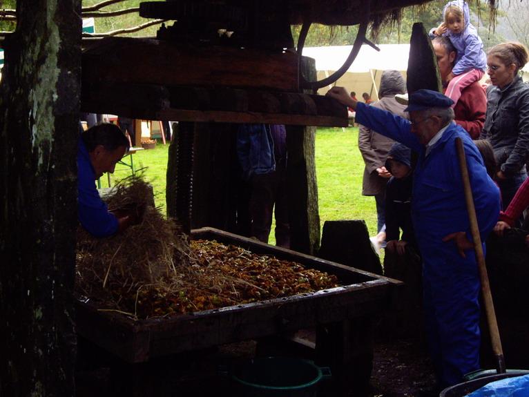 Fête de la pomme, du miel et des champignons Imgp8614