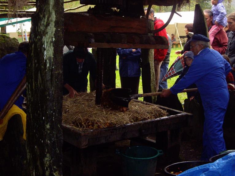 Fête de la pomme, du miel et des champignons Imgp8615