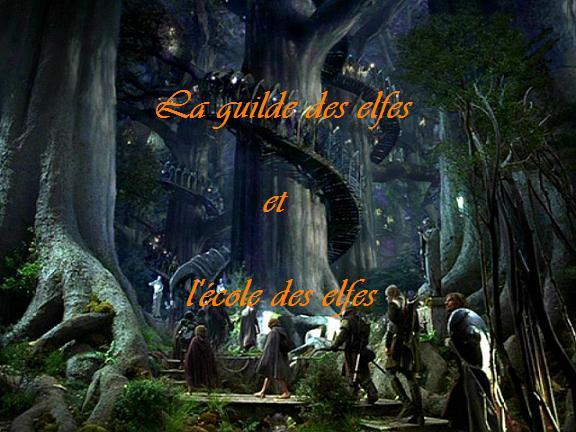 La guilde des elfes et l'école des elfes