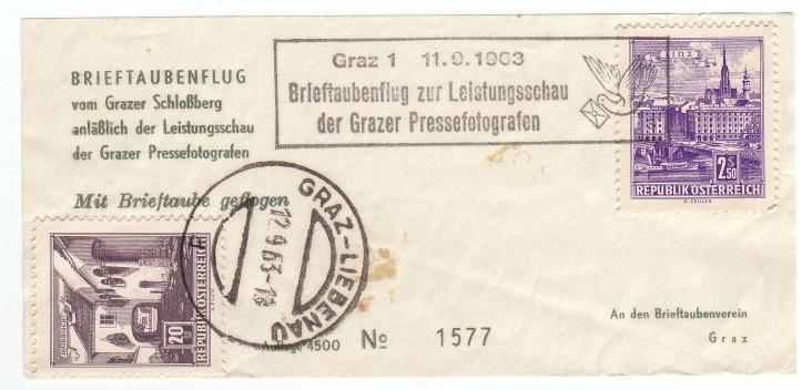Brieftaubenflug Brieft10