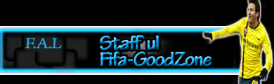 Staff`ul Fifa-GooDZone