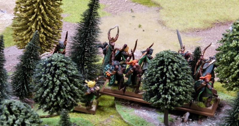 Warhammer Fantasy, Galerie de Batailles - Page 17 P1210866