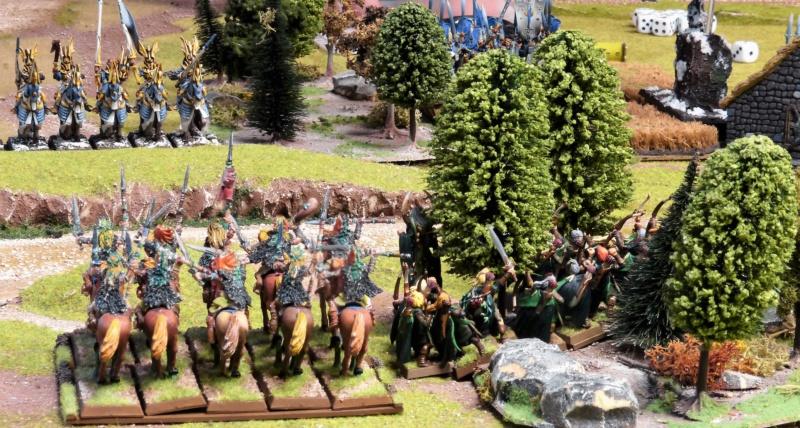Warhammer Fantasy, Galerie de Batailles - Page 17 P1210868