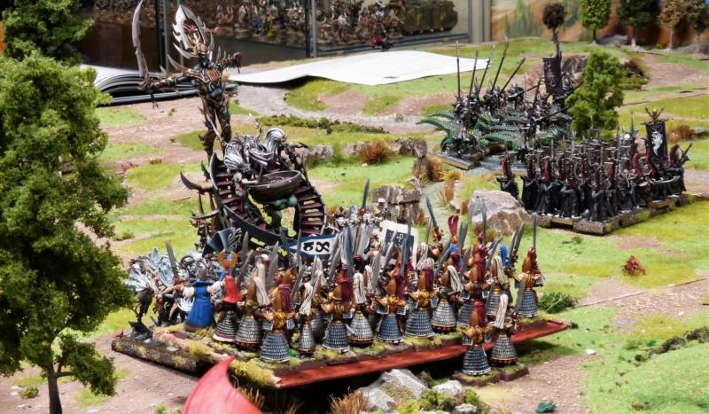 Warhammer Fantasy, Galerie de Batailles - Page 17 P1210871