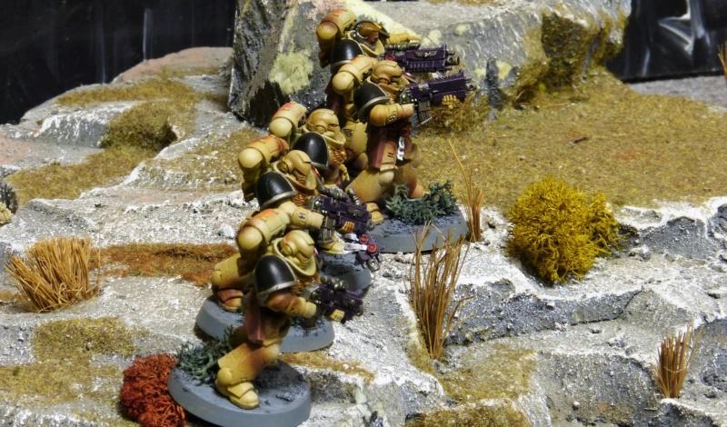 Warhammer 40K. Galerie de Batailles ! - Page 6 P1220017