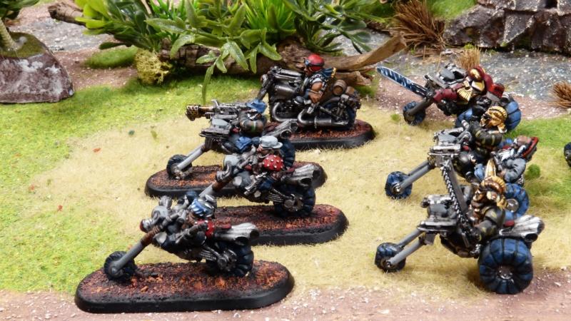 Warhammer 40K. Galerie de Batailles ! - Page 6 P1220129