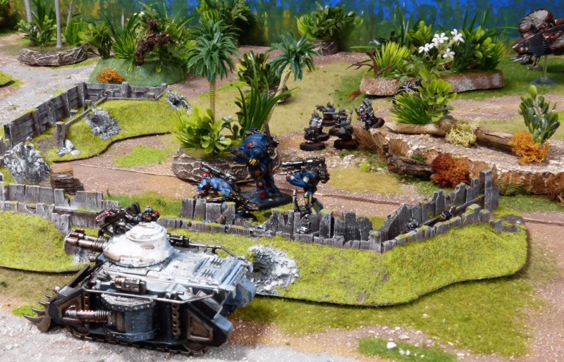 Warhammer 40K. Galerie de Batailles ! - Page 6 P1220130