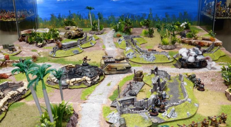 Warhammer 40K. Galerie de Batailles ! - Page 6 P1220141