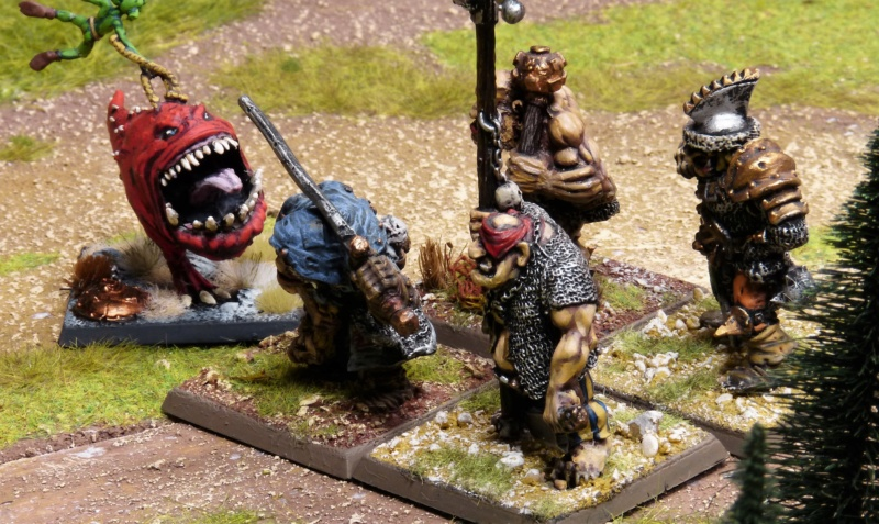 Warhammer Fantasy, Galerie de Batailles - Page 17 P1220159