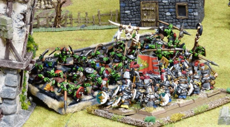 Warhammer Fantasy, Galerie de Batailles - Page 17 P1220160