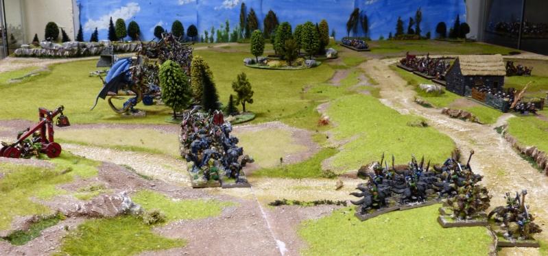 Warhammer Fantasy, Galerie de Batailles - Page 17 P1220370