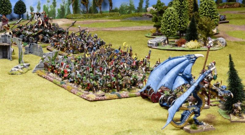 Warhammer Fantasy, Galerie de Batailles - Page 17 P1220372