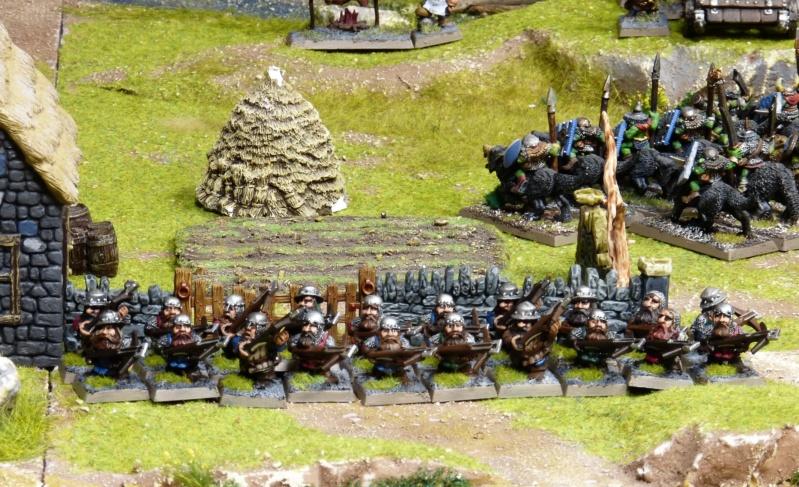Warhammer Fantasy, Galerie de Batailles - Page 17 P1220378