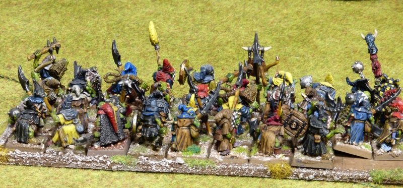 Warhammer Fantasy, Galerie de Batailles - Page 17 P1220379