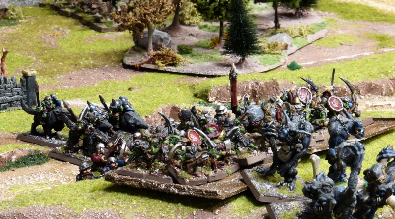 Warhammer Fantasy, Galerie de Batailles - Page 17 P1220382