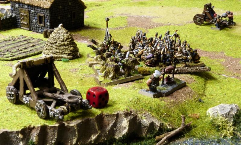 Warhammer Fantasy, Galerie de Batailles - Page 17 P1220383