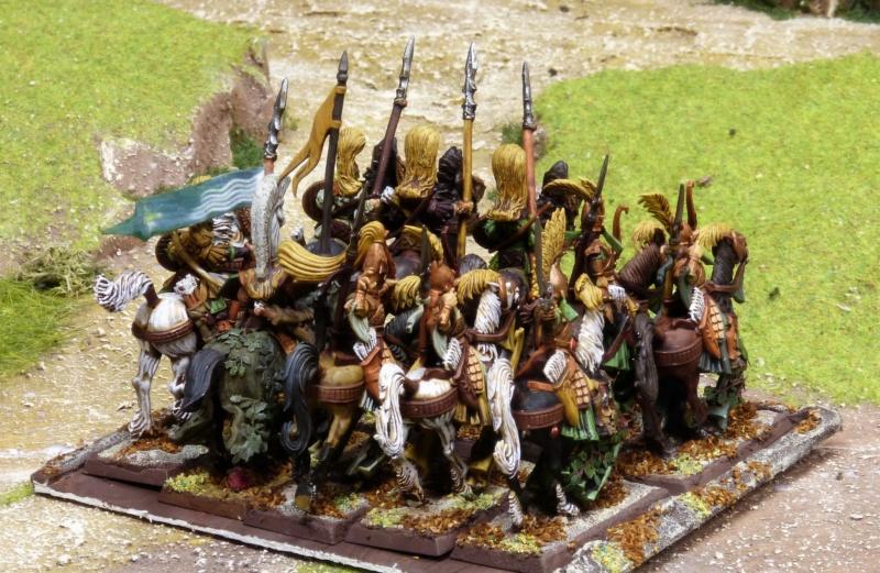 Warhammer Fantasy, Galerie de Batailles - Page 17 P1220443