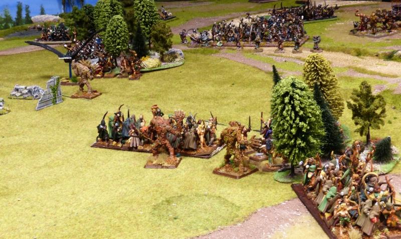 Warhammer Fantasy, Galerie de Batailles - Page 17 P1220444