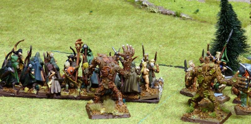 Warhammer Fantasy, Galerie de Batailles - Page 17 P1220445