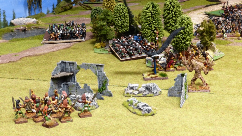 Warhammer Fantasy, Galerie de Batailles - Page 17 P1220446