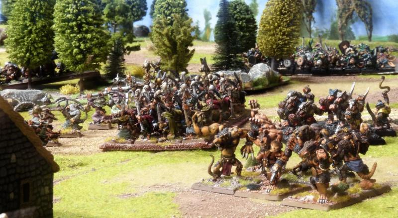 Warhammer Fantasy, Galerie de Batailles - Page 17 P1220449