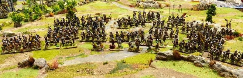 Vend armée Scotts Covenanters (baisse du prix et délotage !) P1220452