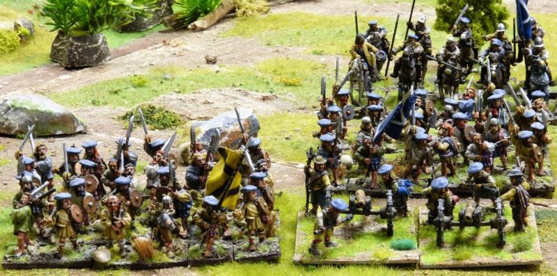 Vend armée Scotts Covenanters (baisse du prix et délotage !) P1220453