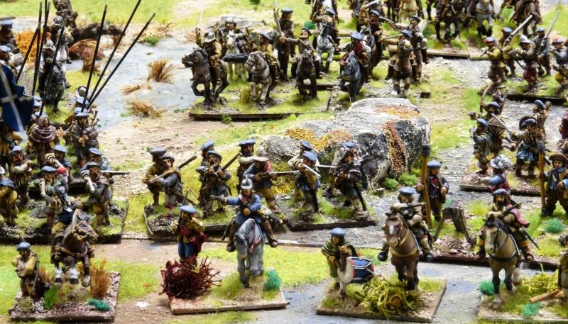 Vend armée Scotts Covenanters (baisse du prix et délotage !) P1220454