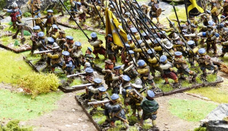 Vend armée Scotts Covenanters (baisse du prix et délotage !) P1220455