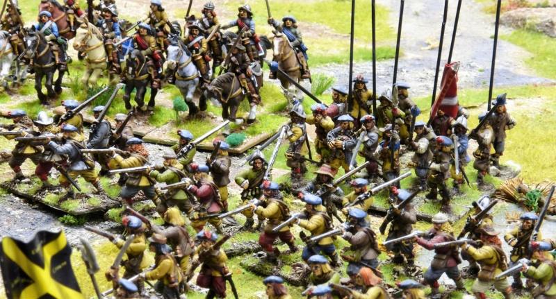 Vend armée Scotts Covenanters (baisse du prix et délotage !) P1220460