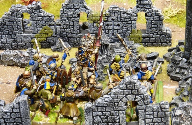 Warhammer Fantasy, Galerie de Batailles - Page 17 P1220476