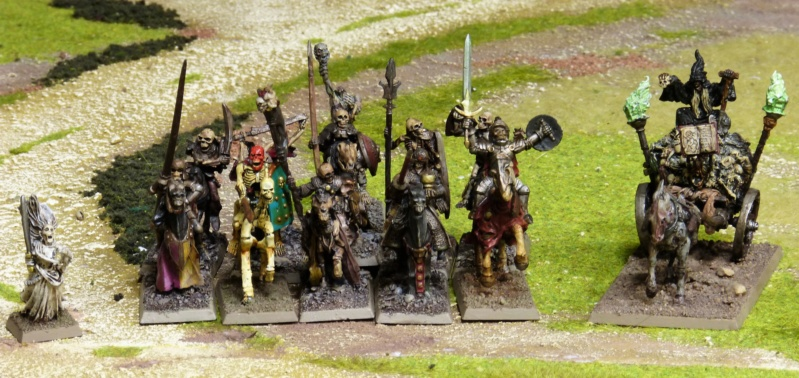 Warhammer Fantasy, Galerie de Batailles - Page 17 P1220479