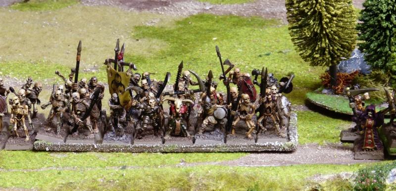 Warhammer Fantasy, Galerie de Batailles - Page 17 P1220480
