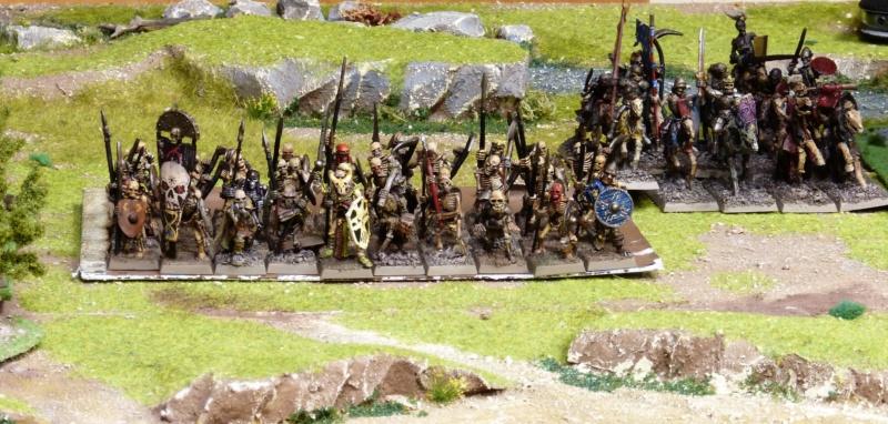Warhammer Fantasy, Galerie de Batailles - Page 17 P1220481