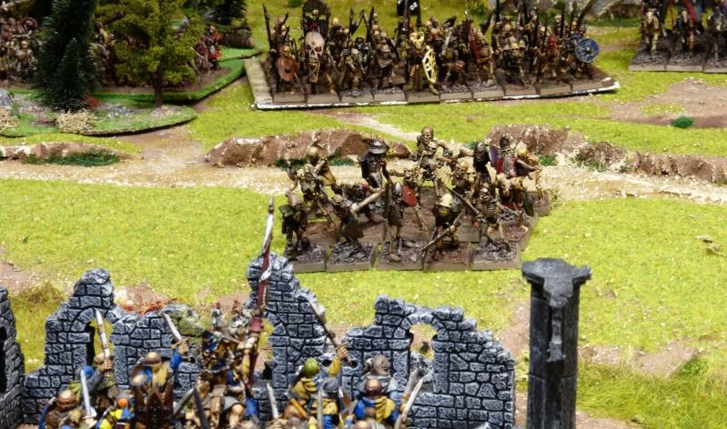 Warhammer Fantasy, Galerie de Batailles - Page 17 P1220483