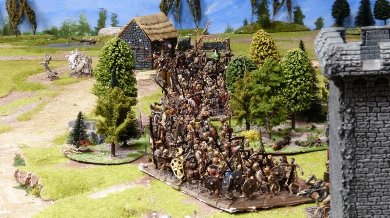Warhammer Fantasy, Galerie de Batailles - Page 17 P1220510