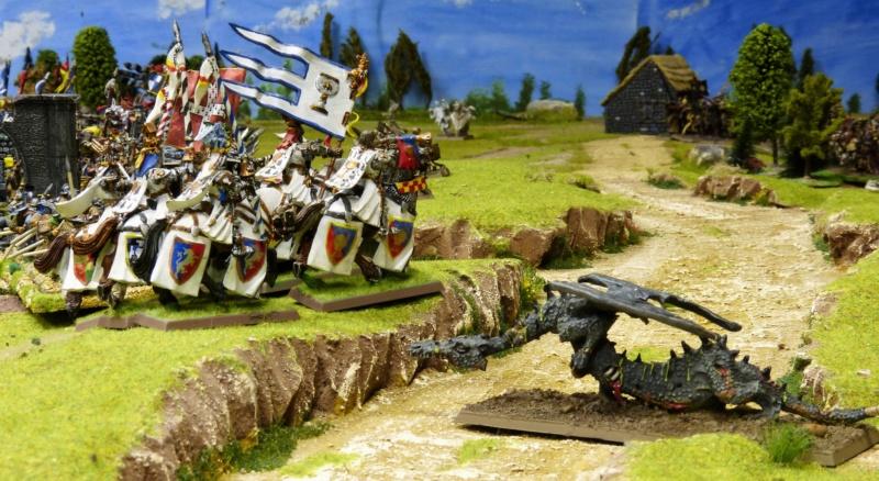 Warhammer Fantasy, Galerie de Batailles - Page 17 P1220511