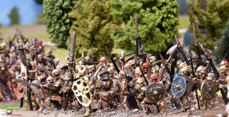 Warhammer Fantasy, Galerie de Batailles - Page 17 P1220514