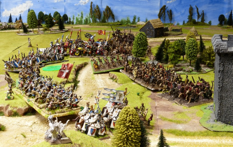 Warhammer Fantasy, Galerie de Batailles - Page 17 P1220518